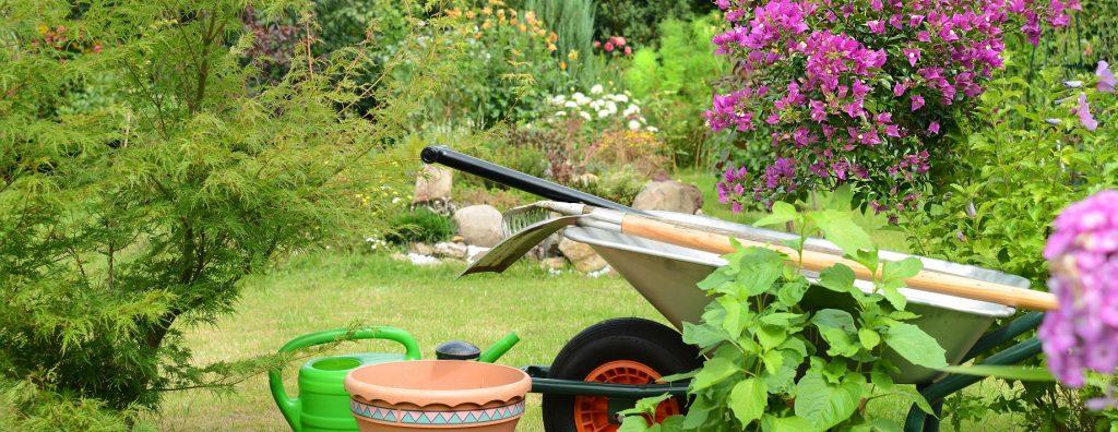 Manchmal hat man als Gartenbesitzer dass Gefühl, dass das komplette Frühjahr nur aus Gartenarbeiten besteht. (#02)