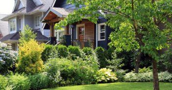 Vorgarten: moderne und pflegeleichte Highlights