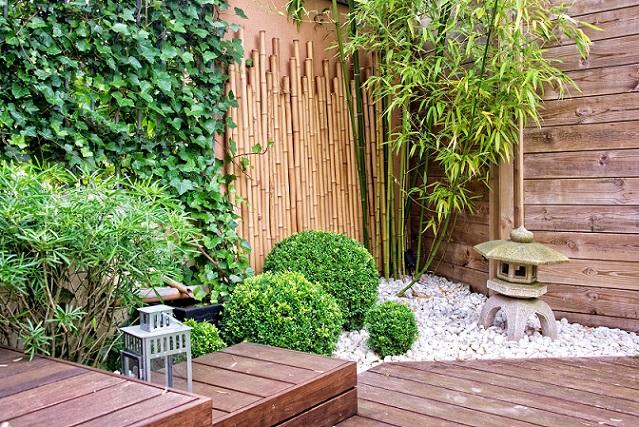 Wer die Pflanzen einfach nur im Garten haben möchte, kann darauf verzichten. (#01)