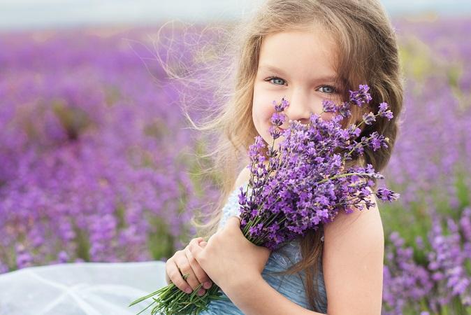 Ein kleines Mädchen mit einem Strauß Lavendel – gibt es ein typischeres Sommerbild? (#13)