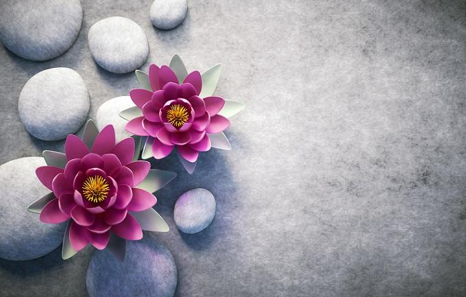 Die Lotosblüte, diese einzigartige Blüte, die sogar Entwickler von Automobilen auf neue Ideen gebracht hat (#16)