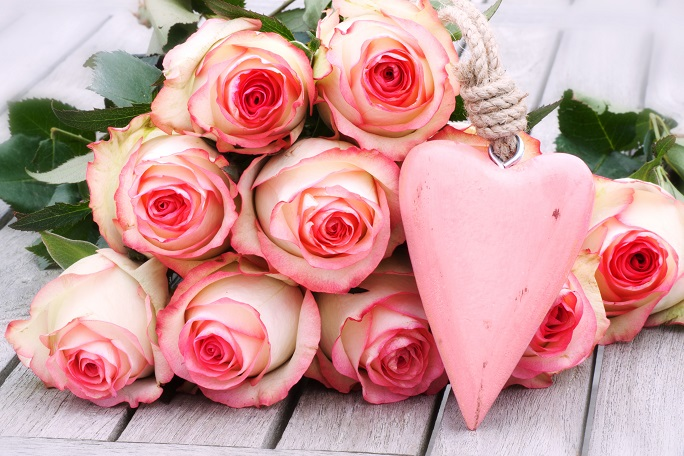 Rosen – die schönsten und edelsten aller Blumen.(#01)