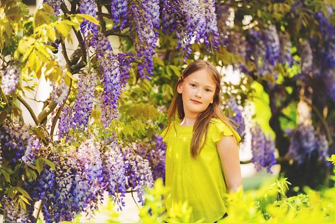 Eine echte Augenweide ist der Blauregen. Die kräftigen blauen Blüten wachsen nach unten und erinnern somit an einen Regenschauer. (#03)