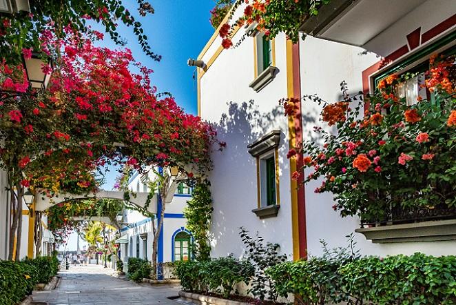 Eine große Farbenpracht bringt die Bougainvillea mit sich. Die Pflanzen sind in Spanien sehr häufig in der Verwendung, vor allem als Fassadenbegrünung, wobei von Grün hier nicht die Rede sein kann, denn stehen sie erst einmal in der Blüte, gibt es ein echtes Farbenmeer aus Tönen in Pink und Rosa. (#07)