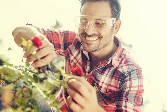 Damit die Rosen lange für Freude sorgen – egal ob im Garten oder auf dem Balkon – brauchen sie Hilfe. Wer jedoch einmal den Dreh für die Pflege raus hat, der kommt in eine Routine. (#02)