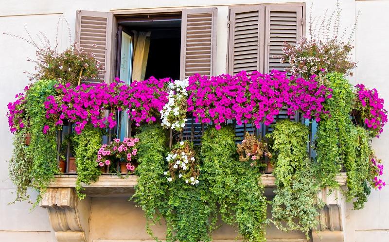 Natürlich hat ein bepflanzter Balkon immer seinen Charme. Dennoch ist es besser, mit Themen zu arbeiten.(#01)