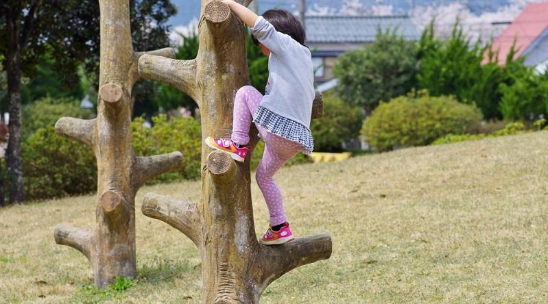 Lassen Sie alte Baumstümpfe im Garten stehen, dort können Kletter- und Geschicklichkeitsübungen stattfinden. (#01)