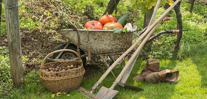 So bereiten Sie Ihren Garten für den Winter vor