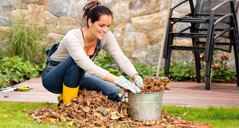 Für das Laub von Eiche und Walnuss gilt das aber nicht, es verrottet nur sehr schlecht und bildet eine dicke Schicht, die den Boden nicht mehr atmen lässt. Pilz- und Schimmelbildung können die Folge sein. (#01)