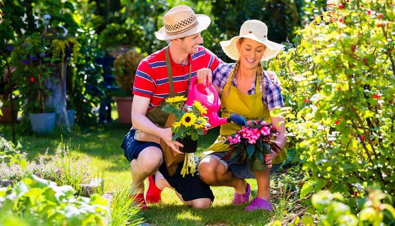 Bei den empfindlichen Gartenblumen und Nutzpflanzen springt vielleicht der Nachbar ein und geht alle zwei oder drei Tage mit der Gießkanne oder dem Gartenschlauch durch. (#04)