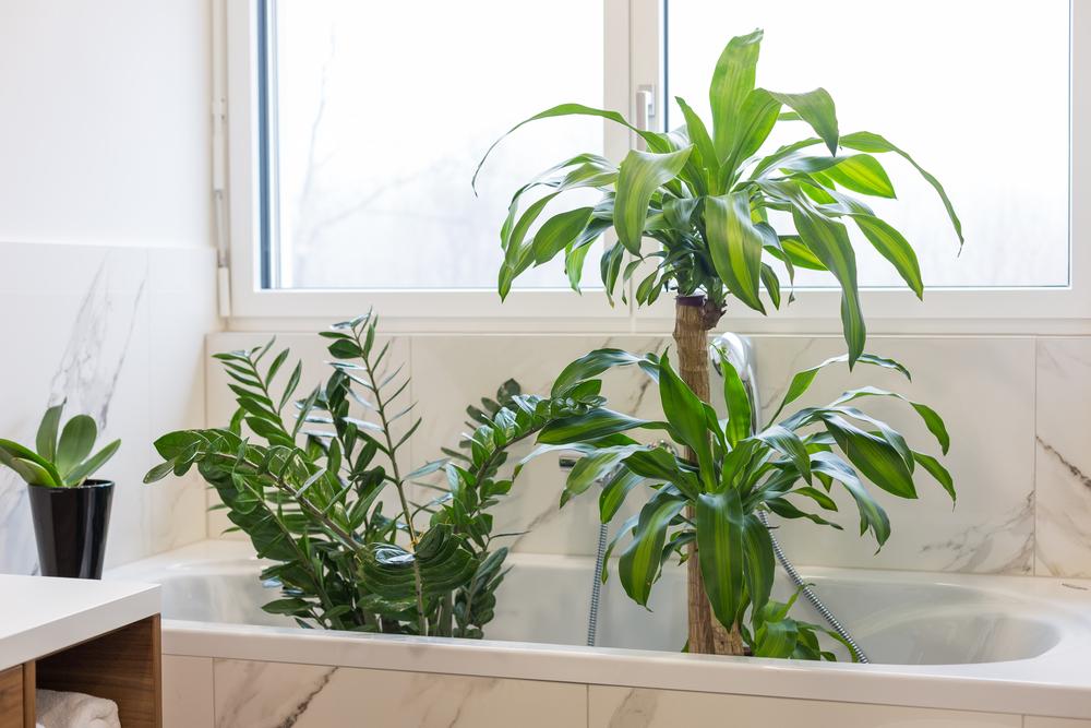 Bevor es in den Urlaub geht, kann man seine Blumen samt Pflanztopf richtig in einen Wasserbehälter eintauchen, bis schließlich keine Luftblasen mehr hochsteigen (#02)