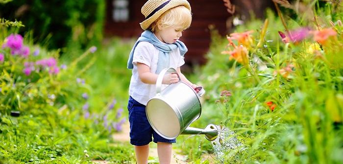 Blumen bewässern im Urlaub: So bleiben Pflanzen trotz Verreisen frisch