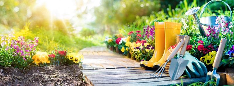Die allgemeine Gartengestaltung setzt auch Möglichkeiten und Grenzen, wenn Sie einen Gartenweg anlegen wollen. (#01)