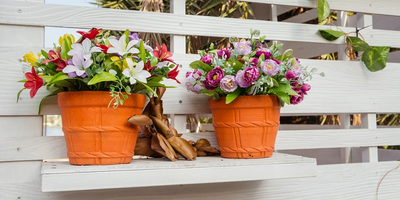 Hobby-Gärtner möchten ihren Pflanzen optimale Wachstumsbedingungen bieten und dazu gehört auch die Wahl der Pflanzgefäße. (#05)