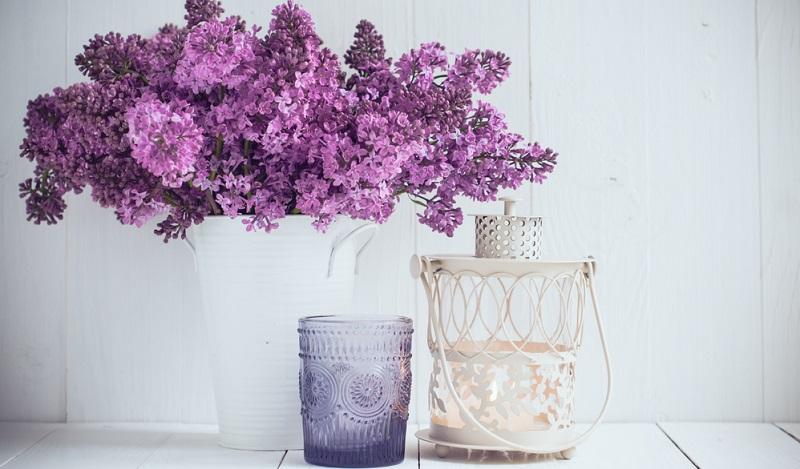 Sie müssen nicht immer Schleierkraut wählen, wenn Sie im Gesteck oder Blumenstrauß Fülle erreichen wollen.