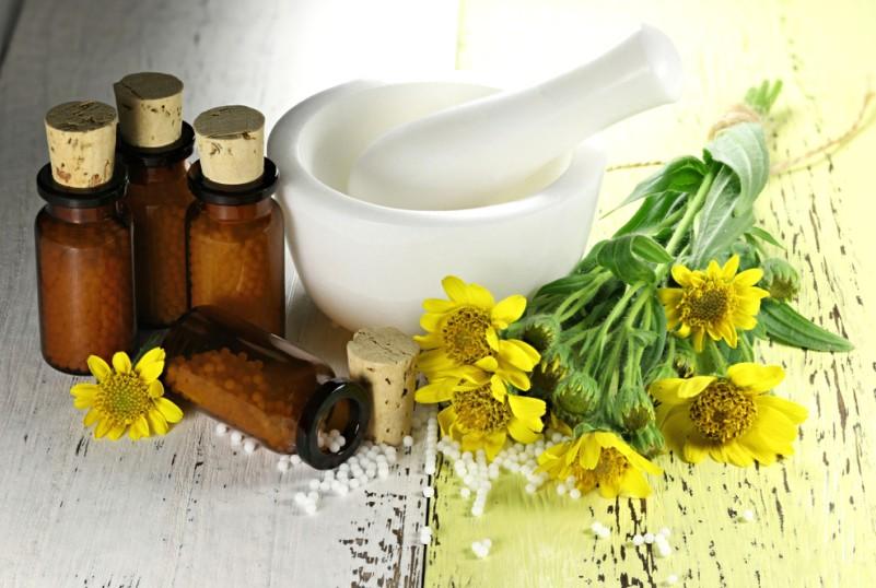 Arnika ist eine der wohl berühmtesten Heilpflanzen, und wird häufig als homöopathisches Mittel eingesetzt. (#6)