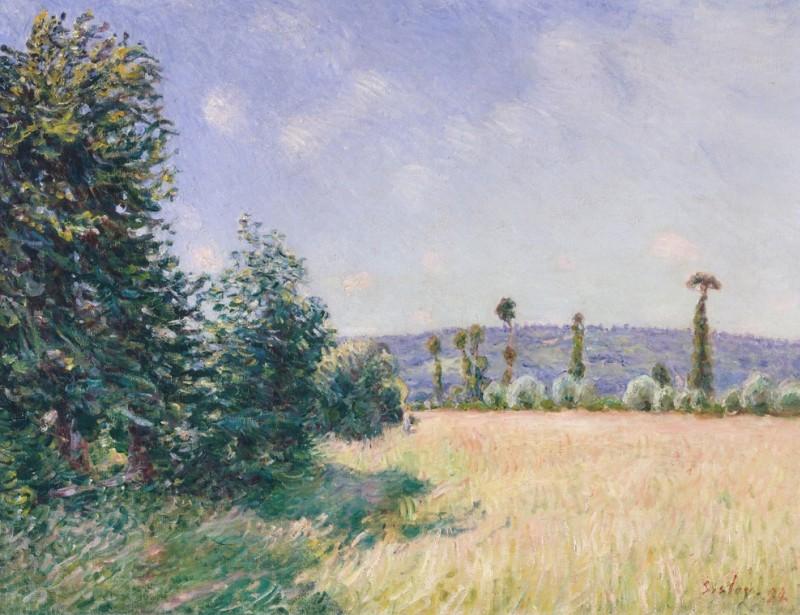 """Bei den Impressionisten waren aber nicht nur Blumen Thema, sondern auch Landschaften: """"Sahurs Meadows in Morning Sun"""" von Alfred Sisley aus dem Jahre 1894. (#4)"""