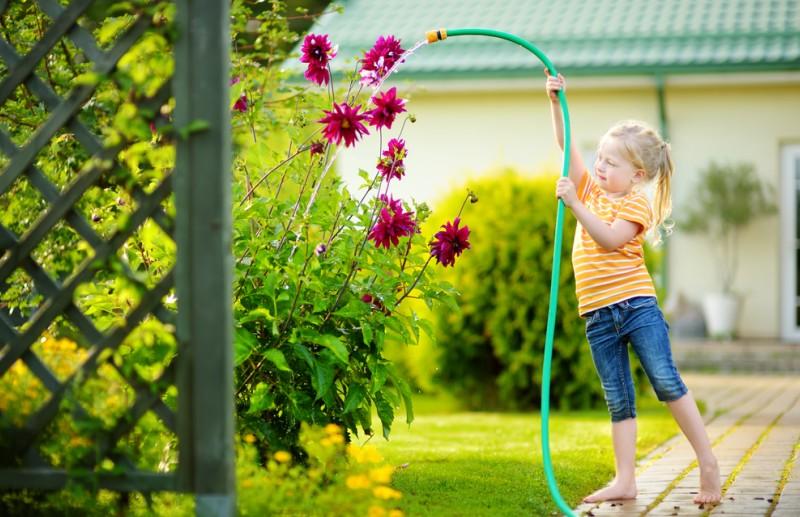 Blumen gießen macht auch schon den Kleinsten Spaß. Dabei sollten die Eltern jedoch auf die richtige Menge und den richtigen Zeitpunkt achten. Zu viel Wasser kann Staunässe verursachen. Bei direkter Sonneneinstrahung sollte ebenfalls nicht gegossen werden. (#1)