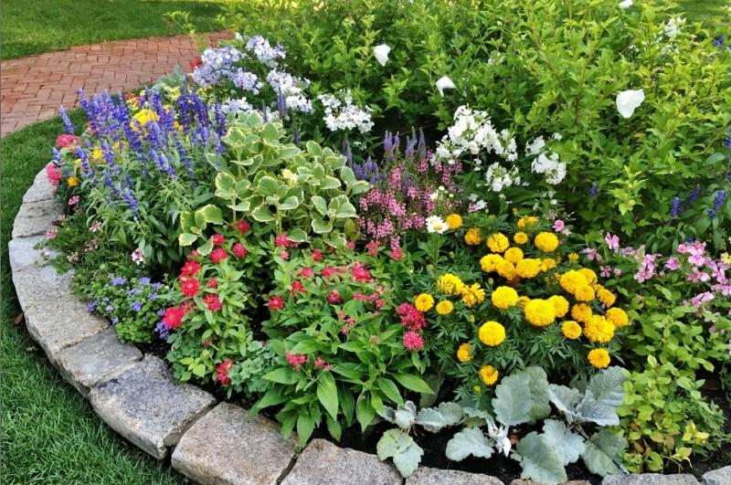 Wer auf die richtige Menge an Wasser beim Blumen gießen achtet, der kann sich über ein blühendes Blumenbeet freuen. (#6)