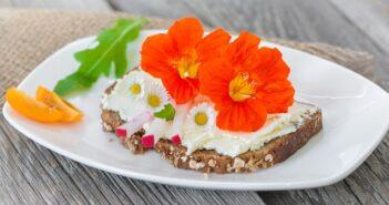 Kapuzinerkresse: Pflanzen, pflegen & Verwendung