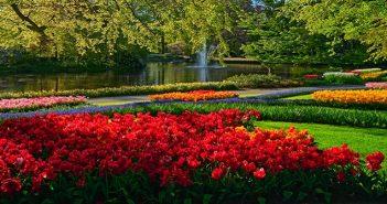 Gartengestaltung: Ideen und Tipps