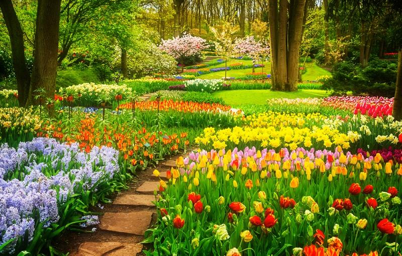 Entscheidend bei der Gartengestaltung sind jedoch nicht nur gute Ideen, wichtig ist auch das Budget, das zur Verfügung steht, und zwar beim Anlegen des Gartens wie auch bei der weiteren Gartenpflege in den folgenden Jahren. (Gartengestaltung Bilder #01)
