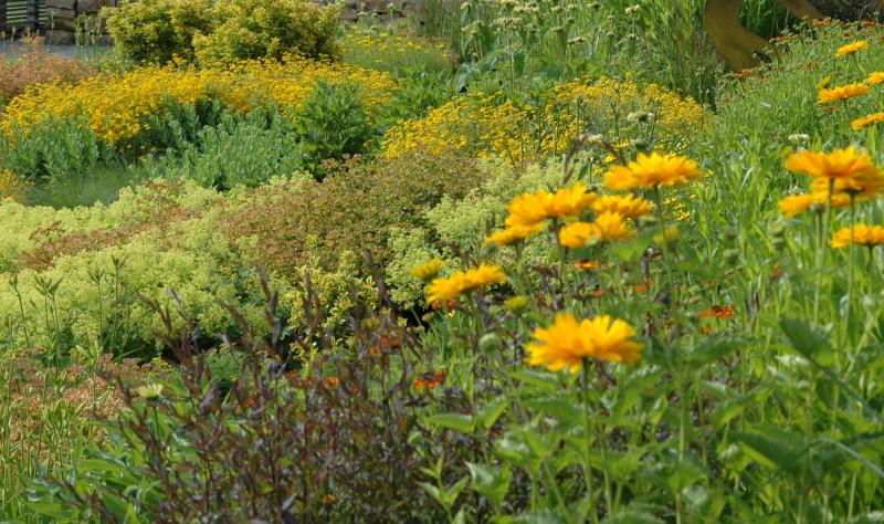 Gartengestaltung: Ideen und Gestaltungstipps für harmonische Gärten