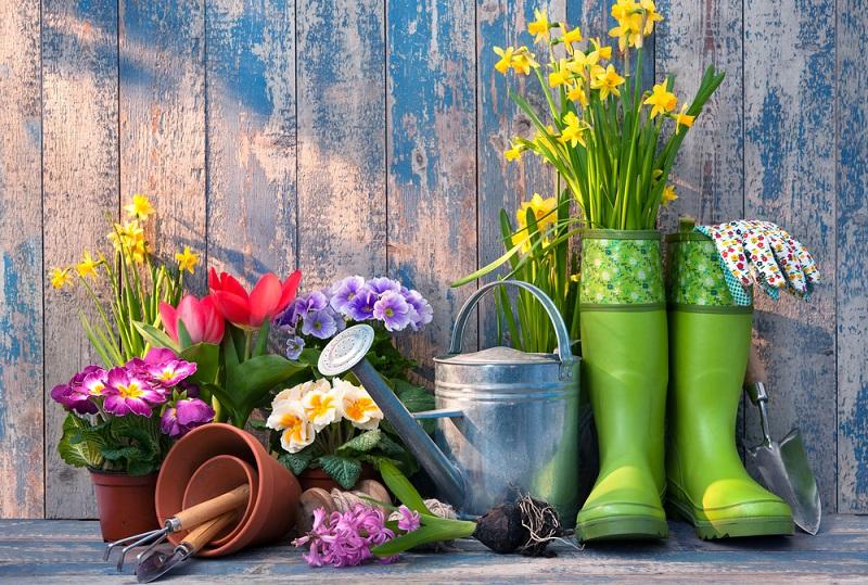 Der Erfolg guter Gartengestaltung sind Bilder wie dieses hier: Die Gartenpflege ist ein wichtiger Bestandteil der Gartengestaltung, um den Garten schön und ordentlich zu halten und sollte nicht vernachlässigt werden. (Gartengestaltung Bilder #03)