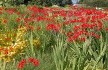 Garten: Ideen zum Nachmachen!