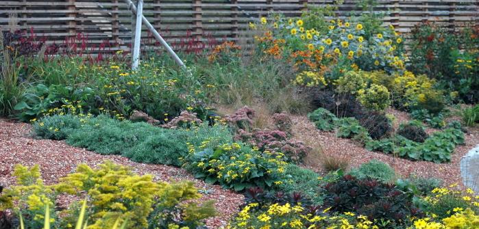 Garten selbst gestalten: Ideen für den Traumgarten