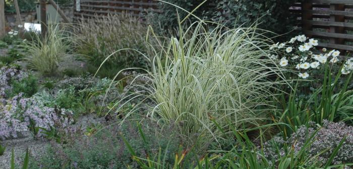 Gartengestaltung: 3 tolle Beispiele
