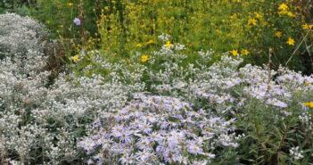 Garten gestalten: Geniale Ideen zum Nachmachen