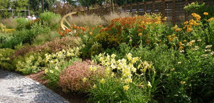 Garten Pflanzen: Tipps vom Experten