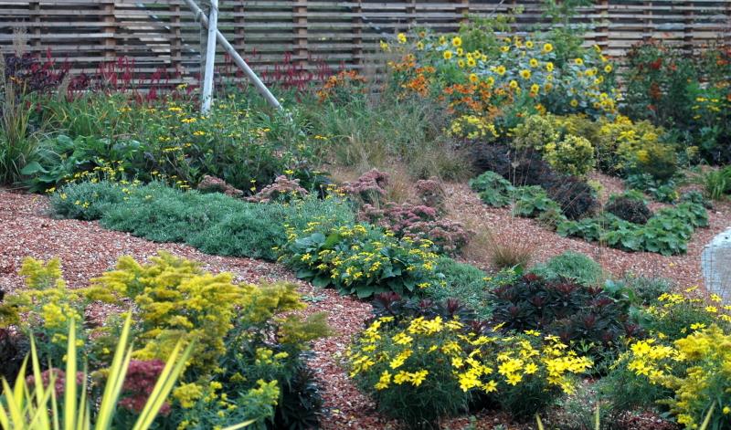 Garten Pflanzen: Tipps zur Silbermischung gibt es vom Experten.