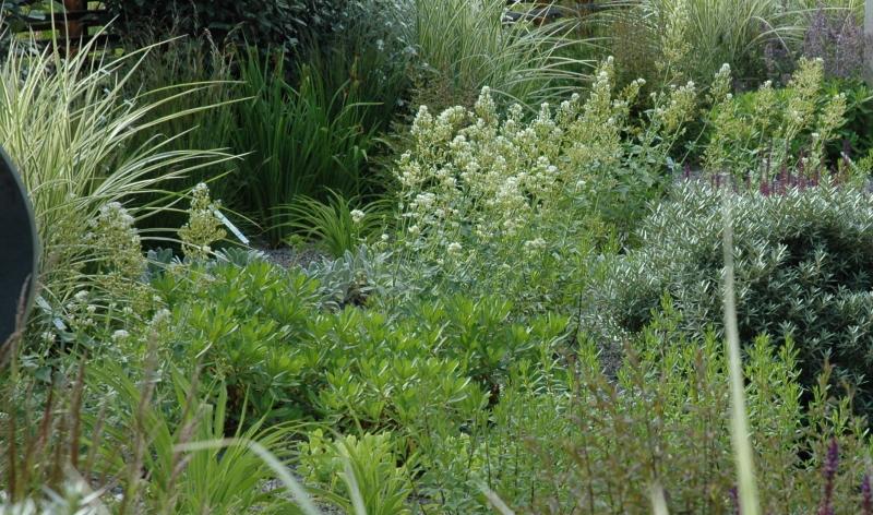Mit den richtigen Pflanzen ist das Garten anlegen ganz einfach und unkompliziert.
