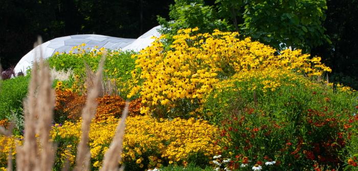 Ideen für den Garten: Tipps & Tricks vom Fachmann