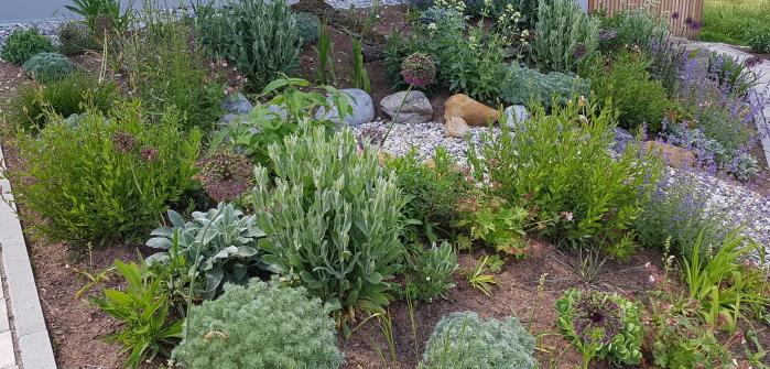 Kleiner Garten: Ideen für den Schatten
