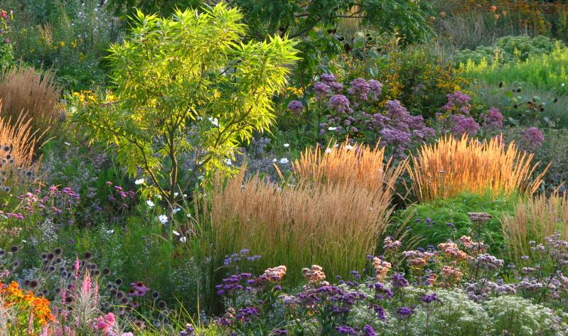 Ein guter Staudenbeet Pflanzplan und die passende Beetidee können ganz leicht von unseren Gartenexperten übernommen werden.