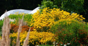 Gartenplanung: Ideen vom Profi