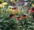 Schöne Gärten: Bilder, Ideen & Tipps