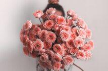 20 schöne Blumen: Natur und Blütenfreude für Haus und Garten ( Foto: Shutterstock- Fascinadora )