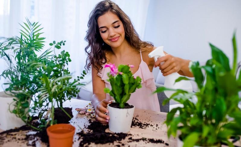 """Beim Pflanzen gießen trifft der Spruch """"viel hilft viel"""" leider nicht zu.  ( Foto: Shutterstock-Dragana Gordic )"""