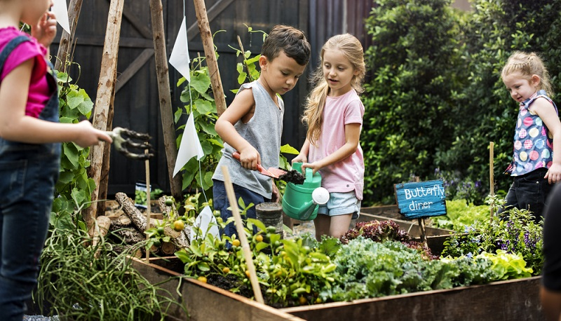 Ob im Garten oder auf dem Balkon: Die folgenden Tipps werden dabei helfen, beim Pflanzen gießen keine Fehler zu machen und den grünen Lieblingen somit zu einem möglichst langen Leben zu verhelfen.  ( Foto: Shutterstock-_Rawpixel.com)