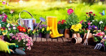 """Gartenarbeiten """"Frühling"""": Mit unserer Checkliste mit 11 Tipps vergisst man nichts ( Foto: Shutterstock-Romolo Tavani)"""