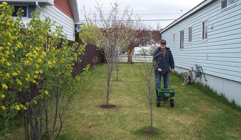 Je nach Stärke des Winters hat der Rasen mehr oder weniger gelitten. Es ist nun wichtig, ihn im Frühling auf die kommende Wachstumssaison vorzubereiten. ( Foto: Shutterstock-_Jessie Eldora Robertson)