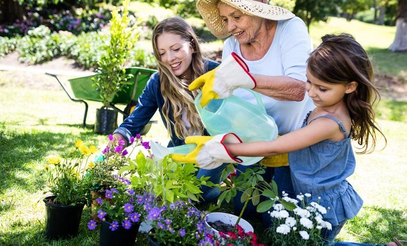 Damit die Frühblüher genügend Kraft haben, brauchen sie eine Düngung mit organischem Dünger. ( Foto: Shutterstock-_wavebreakmedia )