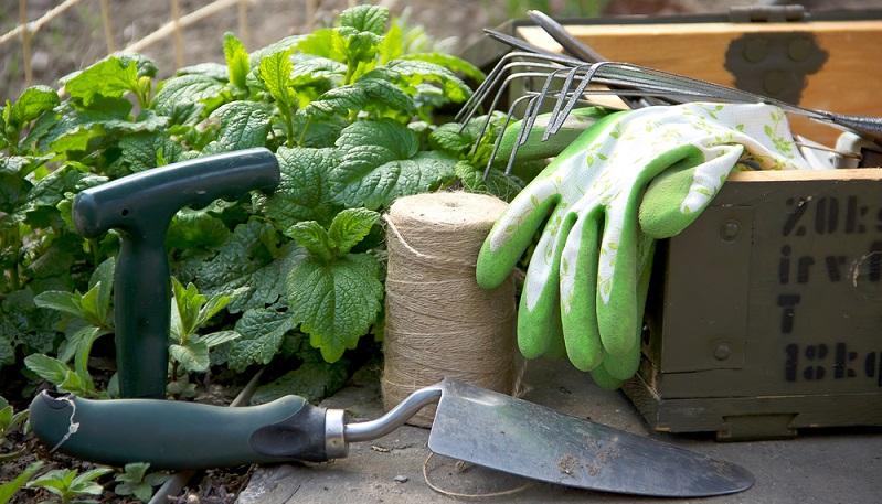Die Gartenarbeit kann nur gut durchgeführt werden, wenn die nötigen Geräte und Werkzeuge sauber und scharf sind.  ( Foto: Shutterstock-Pemaphoto)