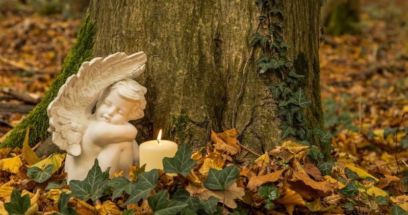 Angesichts dessen, dass sich die Trauerkultur bzw. die Friedhofskultur ändert, wird sich in Zukunft ein solches Bild häufiger zeigen: Hier wurde auf die klassische Grabstelle verzichtet, die Asche des oder der Verstorbenen unter dem Baum beigesetzt. (Foto: Shutterstock-U. Eisenlohr )