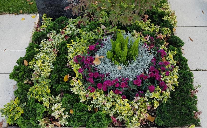 Hier wurde die Grabanlage auf den Winter vorbereitet und liebevoll eingedeckt. Das Grün vom Lebensbaum wurde zusammen mit gelbgrünem Efeu herz- bis kreisförmig angeordnet. (Foto: Shutterstock-Manfred Ruckszio )