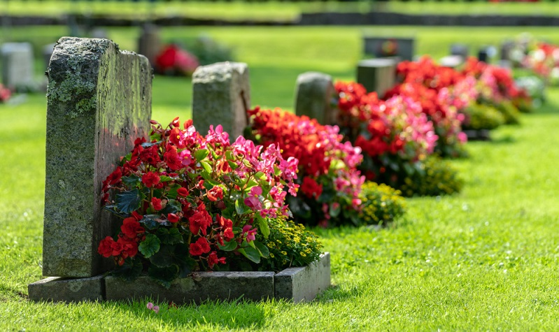 Die Urnengräber sind in Reihe gesetzt und alle ähnlich gestaltet.  (Foto: Shutterstock-Magnus Binnerstam)
